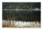 Title: Forest Lake