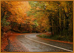 Title: Autumn and colors - 2