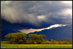 Title: Approaching Storm