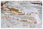 Title: Mammoth Hot Springs Lower Terraces #2
