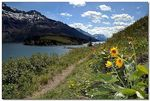 Title: Middle and Upper Waterton Lakes