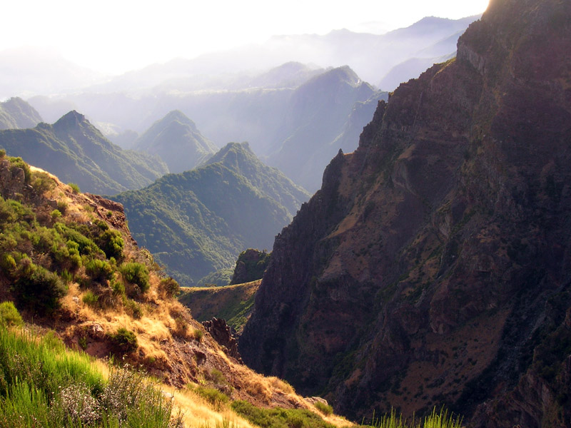 Madeira On The Rocks.