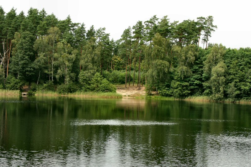 The lakelet
