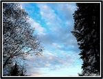 Title: the sky seen at my galleryKodak DX6490