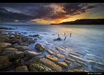 Title: Kimmeridge Bay Marine Reserve