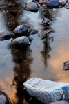 Title: Streamside Reflections