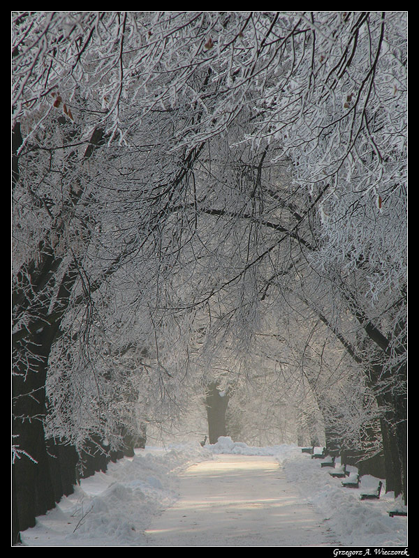 Road To Heart of Winter