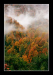 Title: Autumn in Another Planet