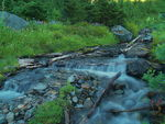 Title: Snass Creek Headwaters