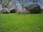 Title: Stones on the Grass