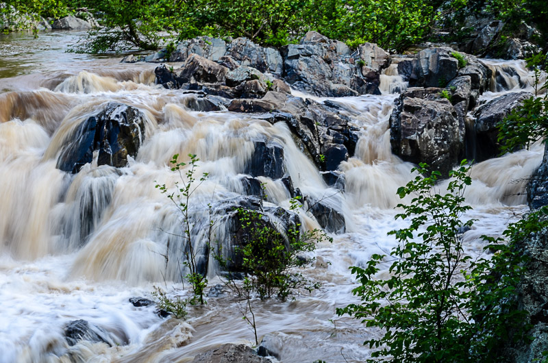 Great Falls in Flood #1