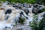 Title: Great Falls in Flood #1