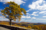 Title: Skyline Drive in Fall - 2