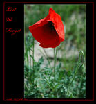 Title: Lest We Forget