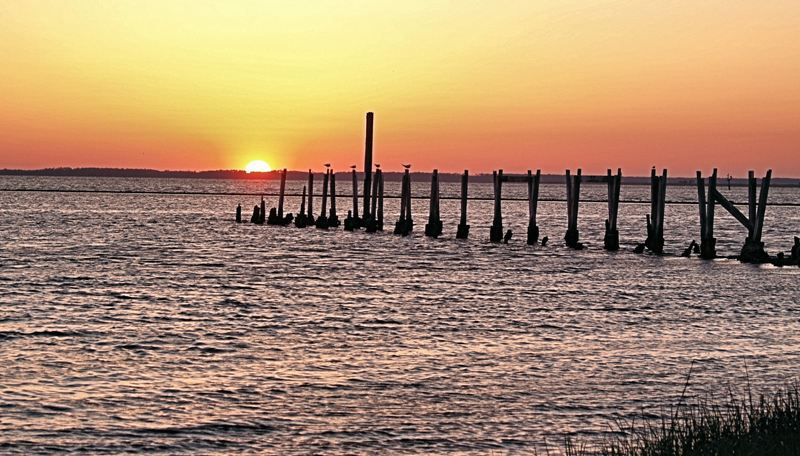 A Dock to the Sun