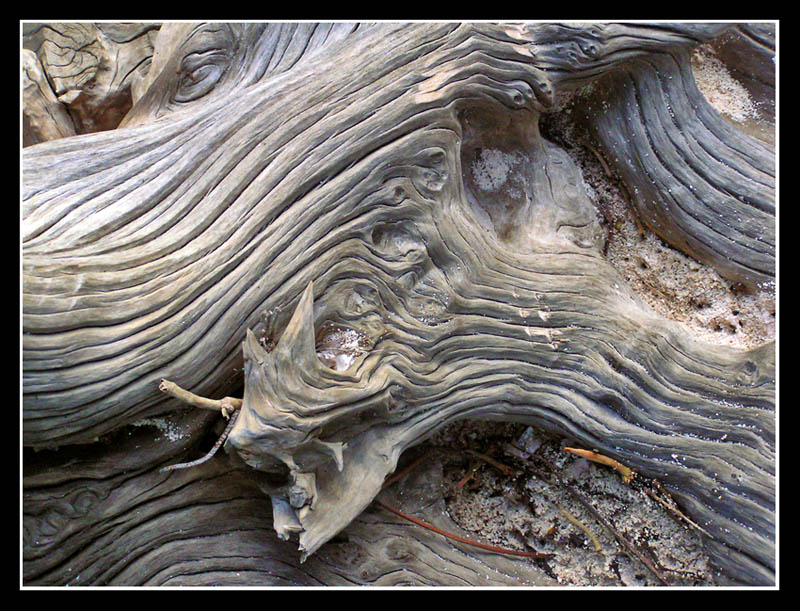 Wood and flow