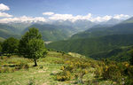 Title: Near Col d'Aspin (Pyrenees,France)