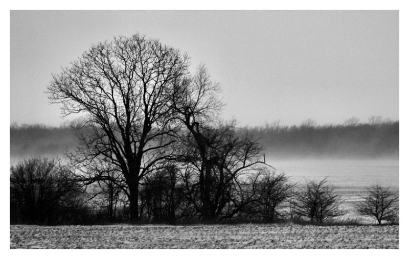 A lonely Winter Day