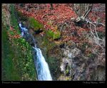 Title: Autumnal waterfall I.