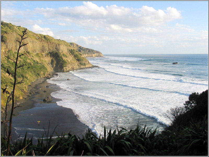 muriwai information Muriwai beach, auckland new zealand virtual tour - accommodation and hotel booking, nz tourism, travel, vacation and holiday information.