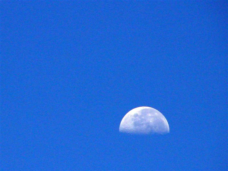 moon at nearly midday