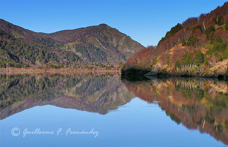 Chilean reflections