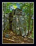 Title: Rock in the woods...