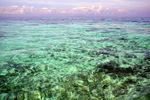 Title: clear water  !!Nikon D300 with MB_D10