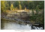 Title: Late Autumn in Beaver Country