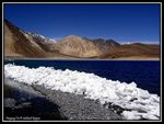 Title: Pangong Tso:  for Bob Shannon