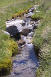 Title: Brook of mountain