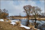 Title: Biebrza River in March