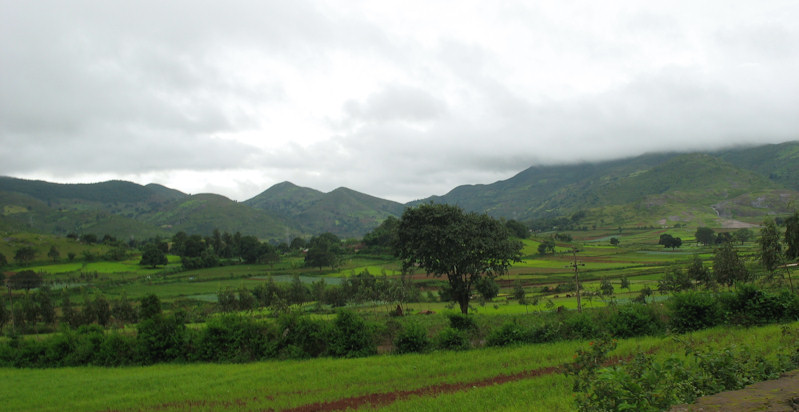 Green Eastern Ghats
