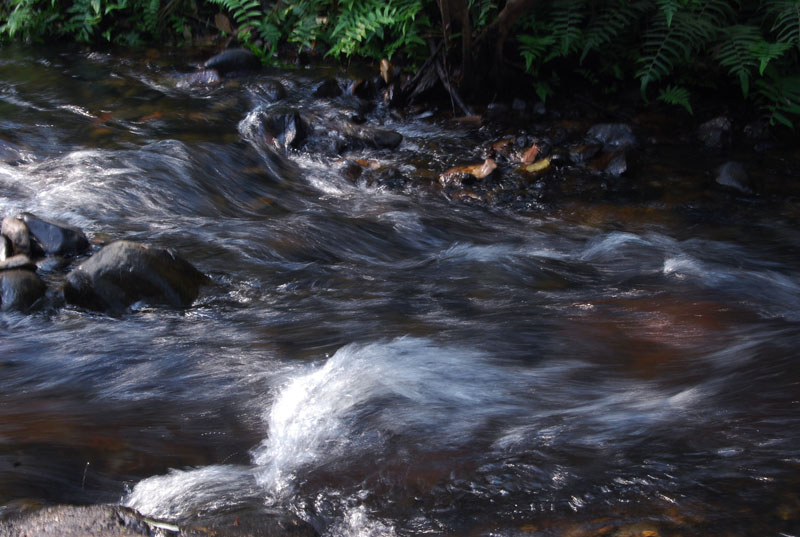 Like the flowing river